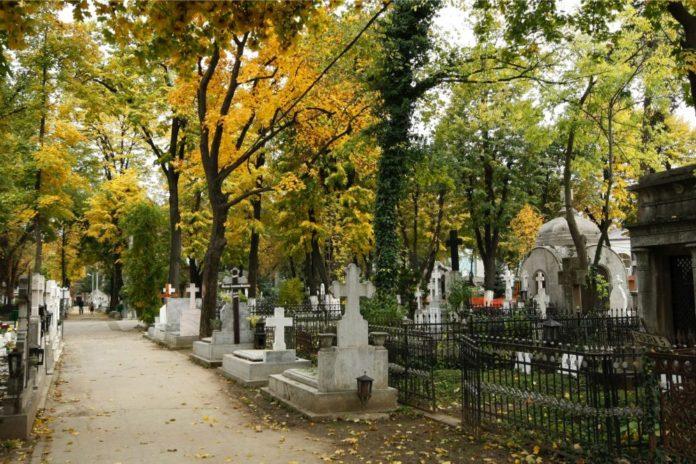 Cimitirul Belu Sectorul 4 News